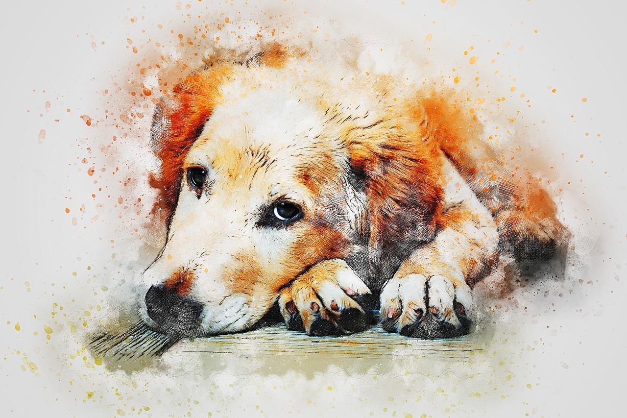 Choose a good Professional Pet Portrait Artist