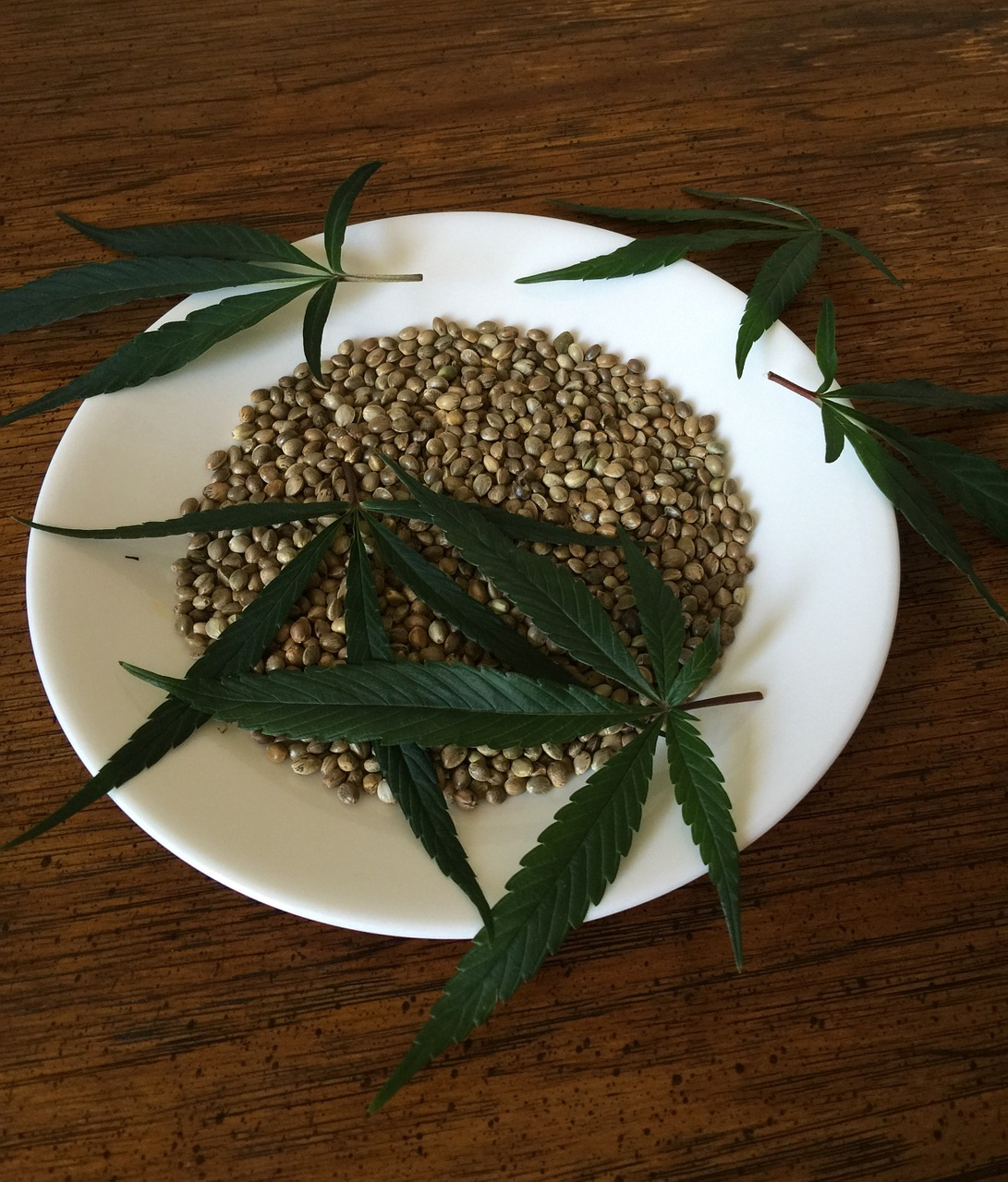 Solve The Issues Of Quality In Cannabis Seed Here
